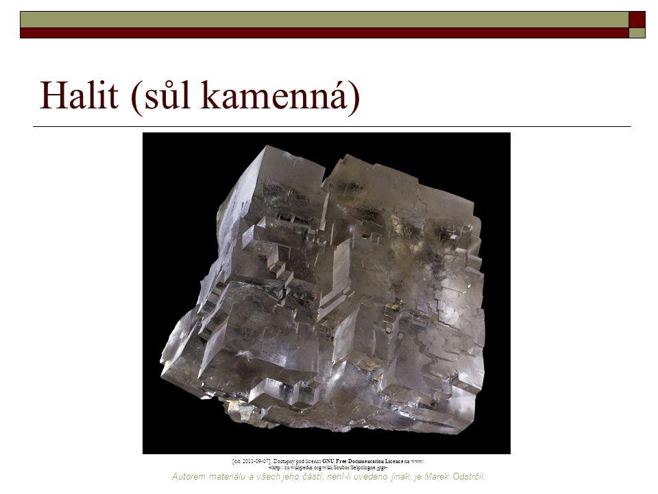 Halit (sůl kamenná) [cit. 2011-09-07]. Dostupný pod licencí GNU Free Documentation Licence na www: